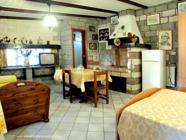 Villa Paola & Scacciapensieri